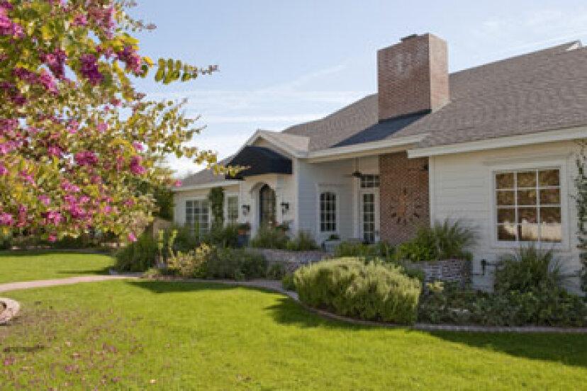 あなたの家への昆虫の損傷を修復する
