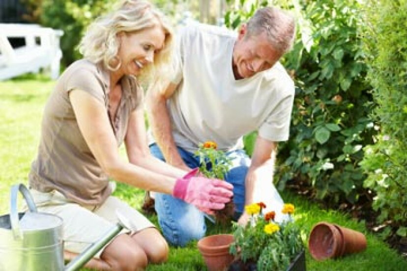 退職したカップルのための 10 の仕事