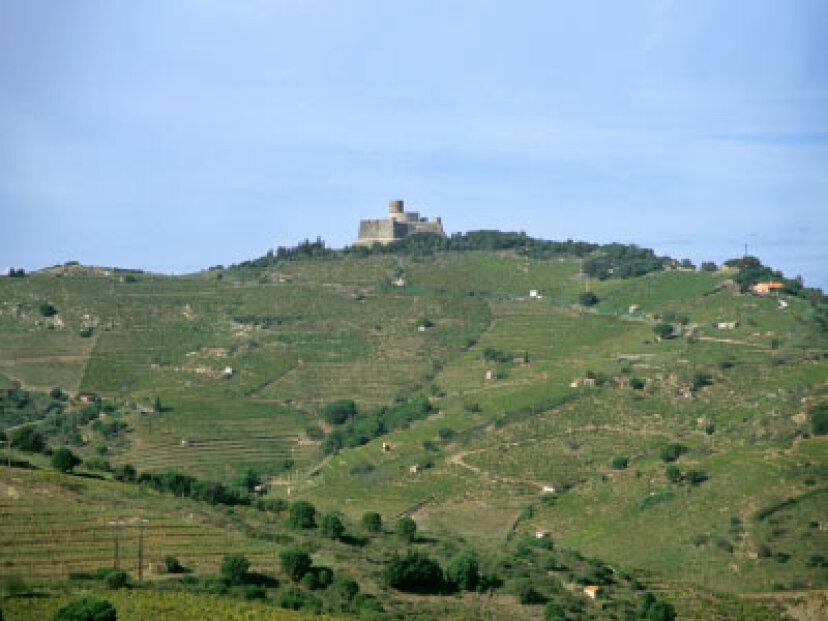 リアスバイシャスワイン産地への究極のガイド