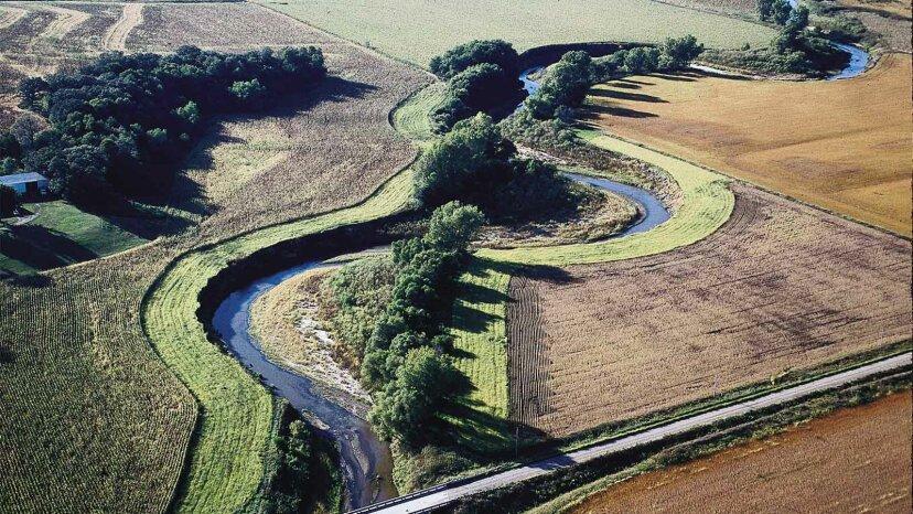 地元の水路を救うために水辺の緩衝材がどのように機能するか