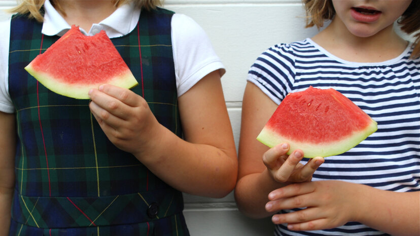 So-called seedless watermelons may eliminate the nuisance of constant spitting, but let's call them as they are -- totally seeded!  Cynthia Monaghan/Moment Mobile/Getty Images