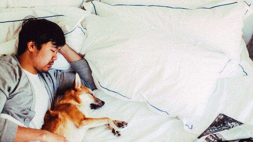 Wie der Schlaf unsere Erinnerungen festigt