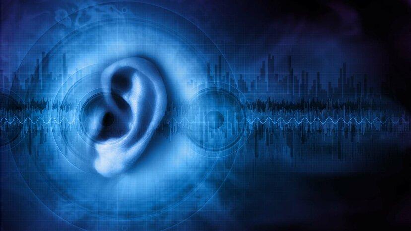Los científicos descubren proteínas que podrían ayudar a restaurar la audición