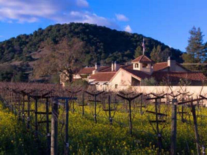 アメリカ南西部のワイン産地への究極のガイド
