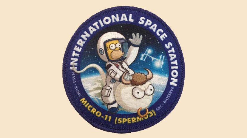 Warum hat die NASA eine Ladung Sperma in den Orbit geschickt?
