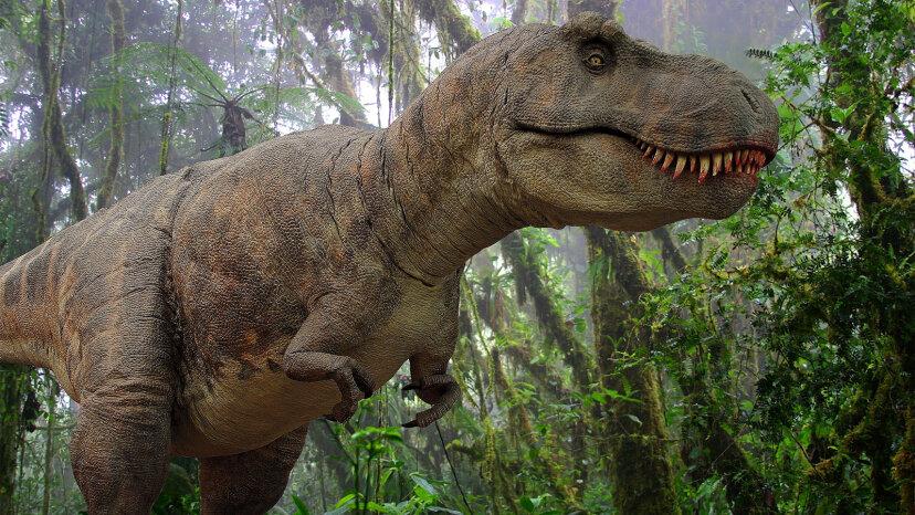 ティラノサウルスレックスは暴君トカゲの王様でした