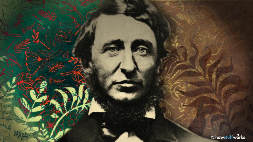 Warum wir Henry David Thoreau lieben, in 5 Zitaten