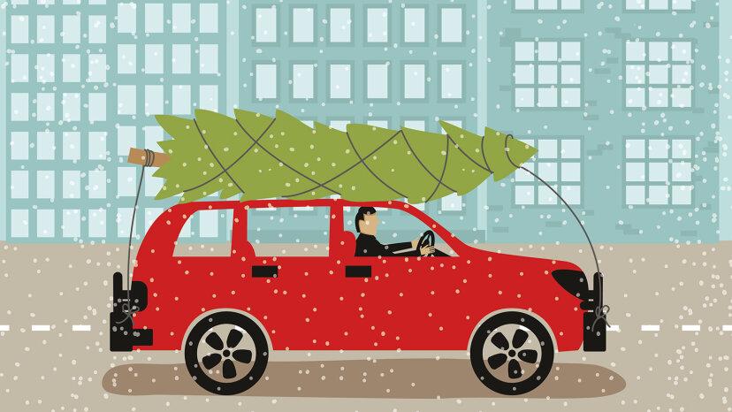 あなたのクリスマスツリーを安全に家に運ぶ方法