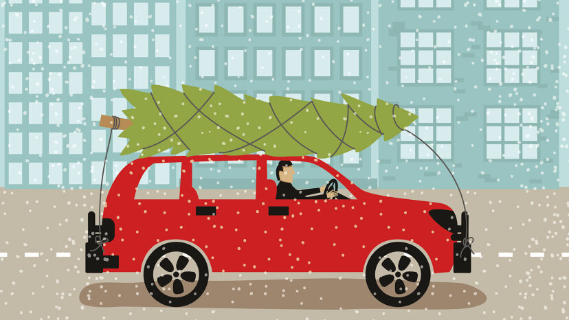 transporting Christmas tree