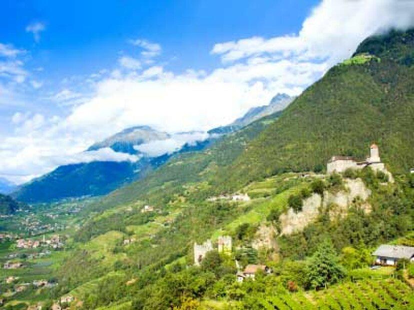 トレンティーノ-アルトアディジェワイン地域への究極のガイド