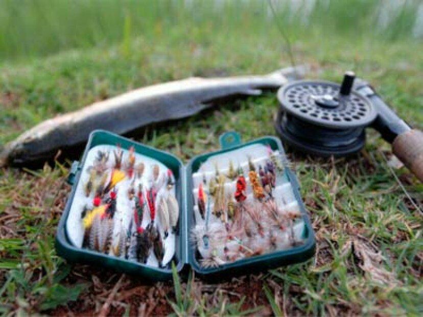 マス釣りのルアーと餌の紹介