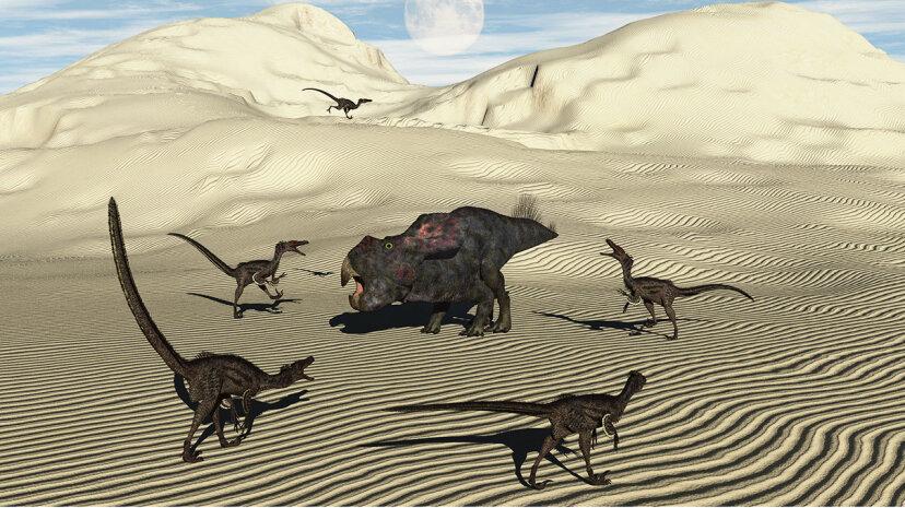 velociraptors hunting in pack
