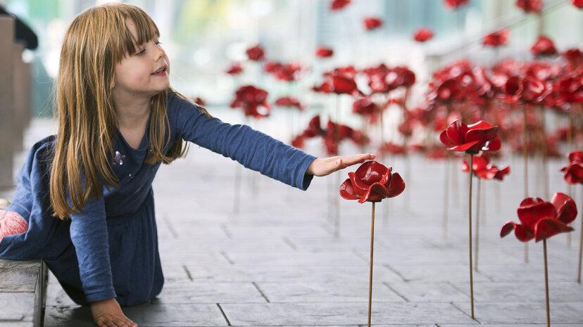 ポピーの彫刻を動かすことは第一次世界大戦の兵士を称え続けます