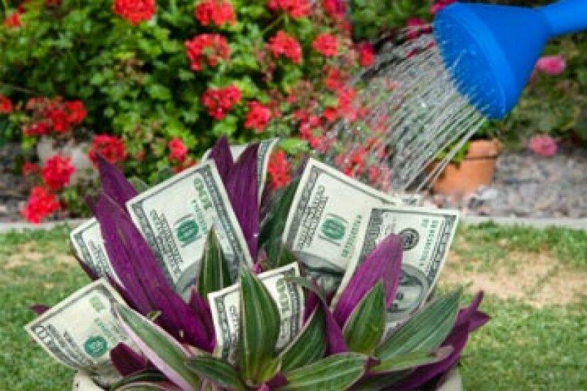 退職後はどこにお金を預けるべきですか?