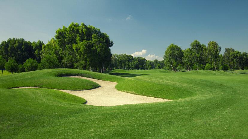 Zoysia grass golf course