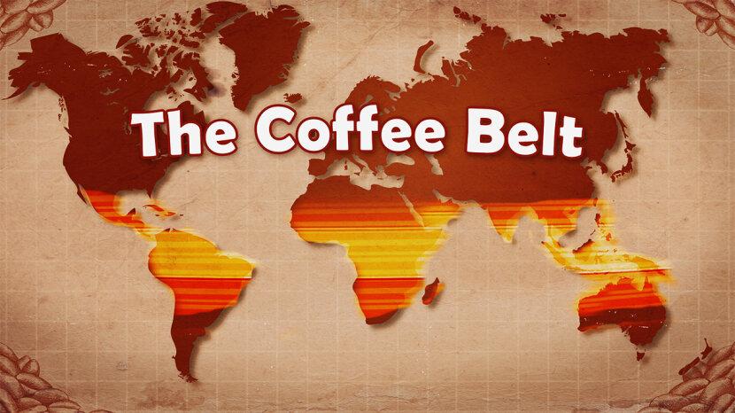 Coffee Belt