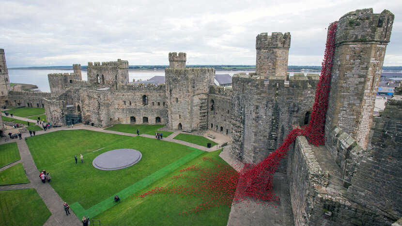 poppy sculpture Caernarfon Castle