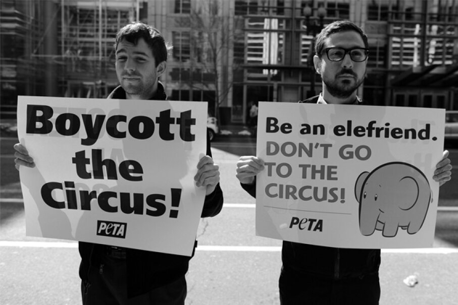 People for the Ethical Treatment of Animals, better known as PETA, has fiercely advocated for circus animals for years.  JEWEL SAMAD/AFP/Getty Images