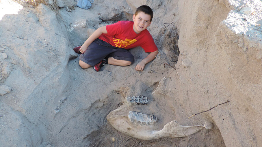 New Mexico resident Jude Sparks poses near the Stegomastodon skull he discovered in 2016. Researchers excavated the fossil find in May 2017 for study and preservation. Peter Houde