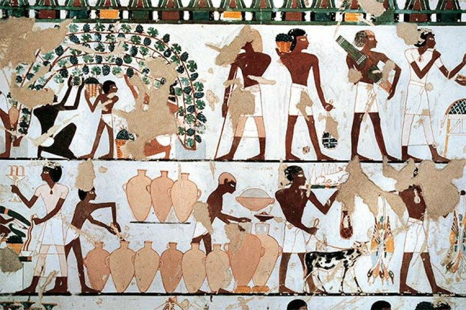 The tomb of Prince Khaemwaset, from 12th century B.C.E. Egypt,  has a mural painting depicting a scene of grapes picking and wine production. DEA/G. LOVERA/De Agostini/Getty Images