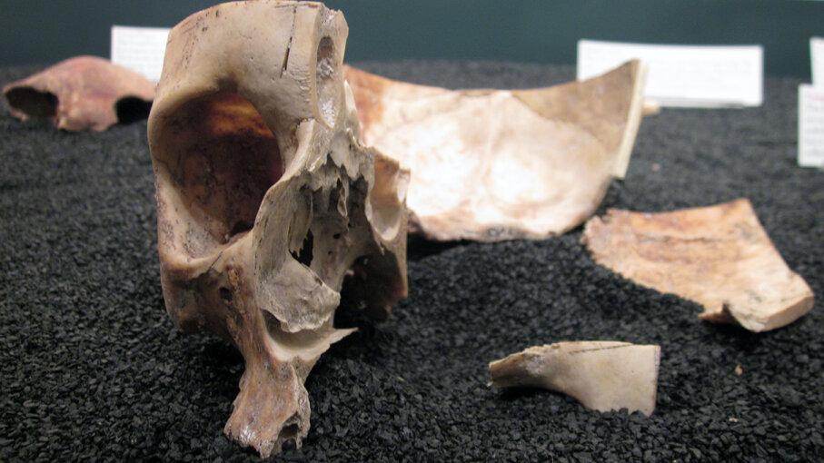 Craven Street Bones Ben Franklin House