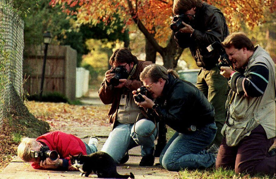 Photographers surround poor Socks, then-President-Elect Bill Clinton's cat outside the governor's mansion in Arkansas, 1992. The cat was such a  favorite with the press, the Clintons had to ask them to leave him alone. MIKE NELSON/AFP/Getty Images