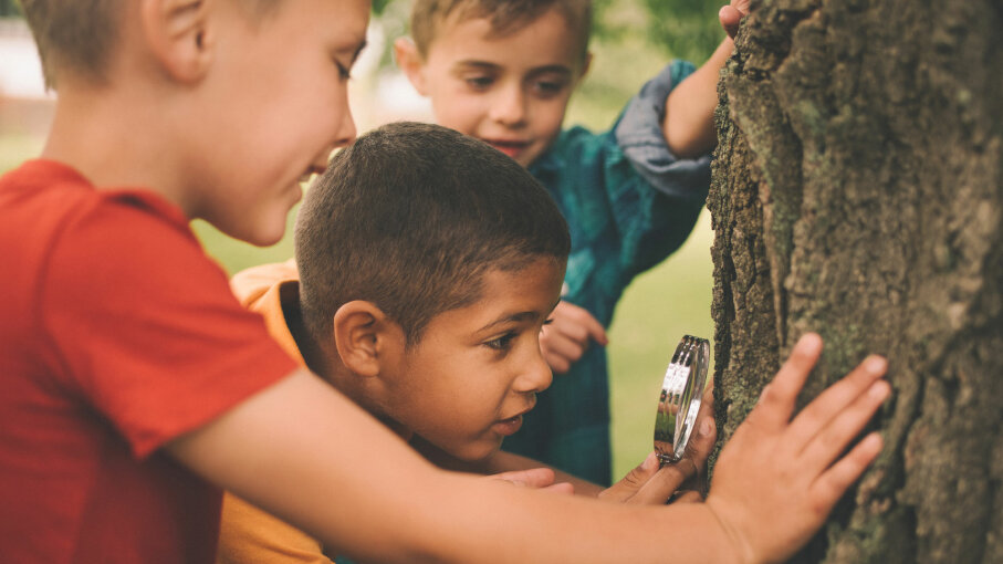 boys at tree with magnifying glass