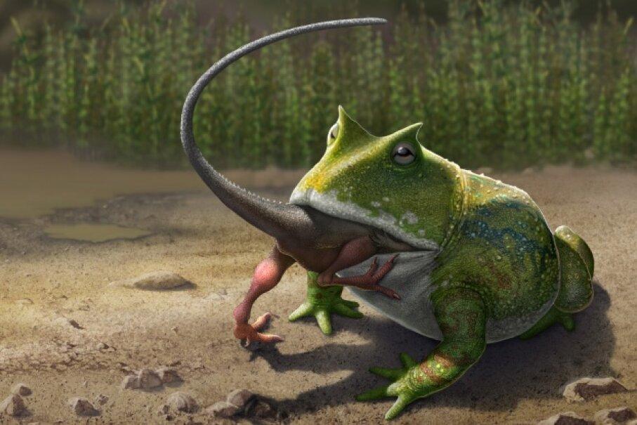 Yum! Tasty, small dinosaurs! Sergey Krasovskiy/Stocktrek Images/Getty Images