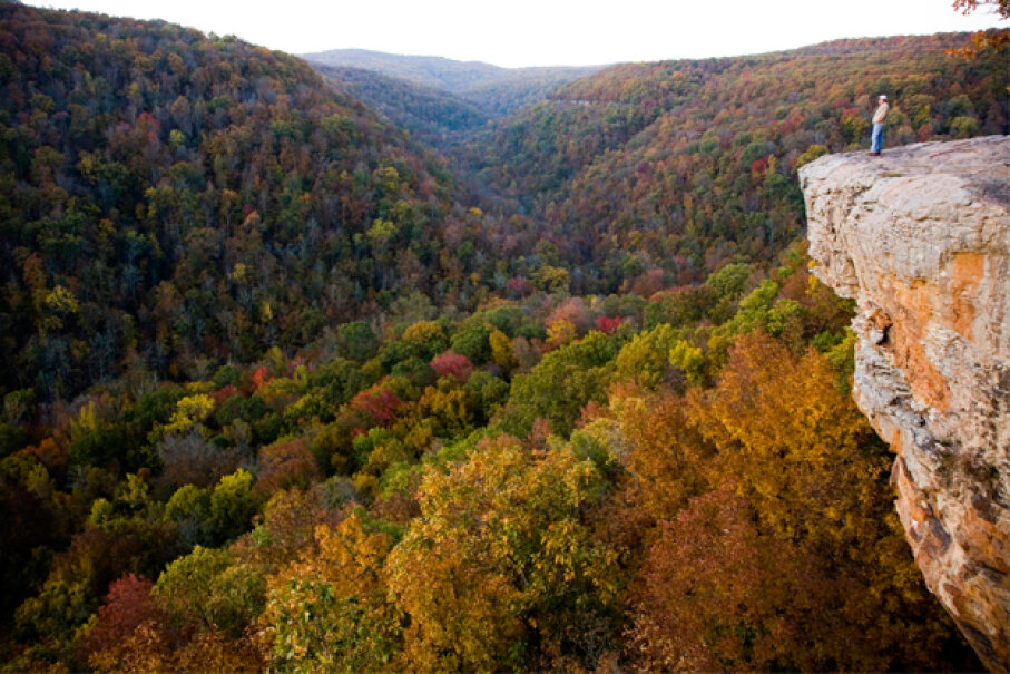 The Arkansas wilderness at Devil's Den State Park swallowed up Katherine Van Alst. Michael Hanson/Getty Images