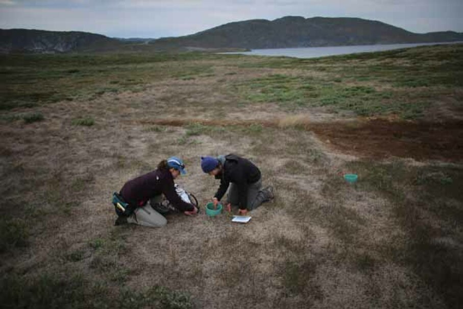 Julia Bradley-Cook (L) and Leehi Yona use a device to read the amount of CO2 that is being released from the warming ground on July 10, 2013 in Kangerlussuaq, Greenland. Joe Raedle/Getty Images