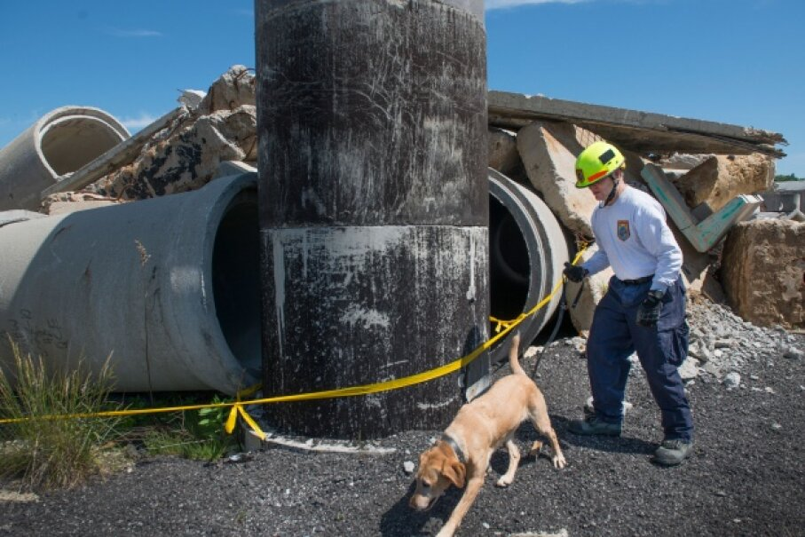 Search and rescue team Ron Sanders and canine Pryce prep for a training run in Lorton, Virginia. © Linda Davidson / The Washington Post via Getty Images