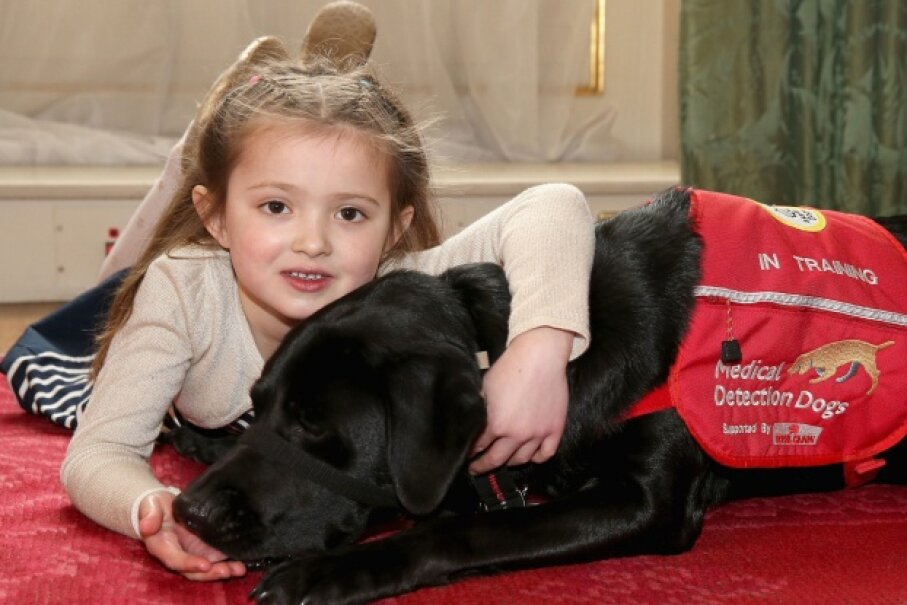 Cerys Davies and her dog Wendy. Wendy is part of the U.K. charity program Medical Detection Dogs, and is trained to detect blood sugar changes associated with type 1 diabetes. © Chris Jackson/AFP/Getty Images