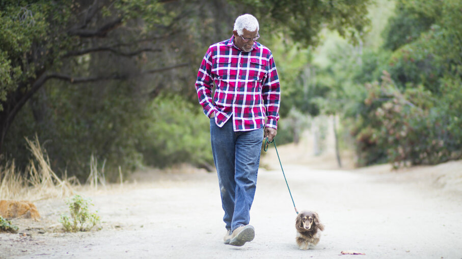senior walking his dog