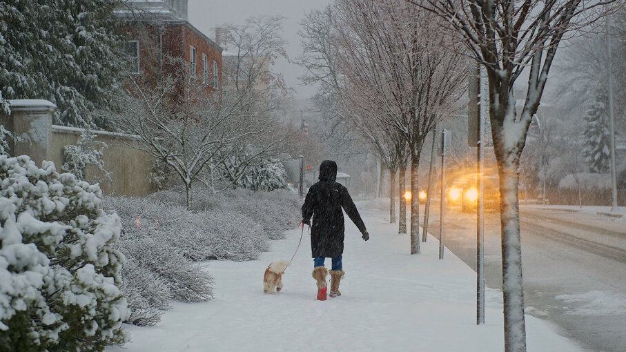 walking dog in snowstorm