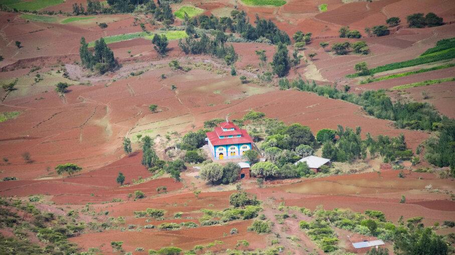 Ethiopian Orthodox church, forest