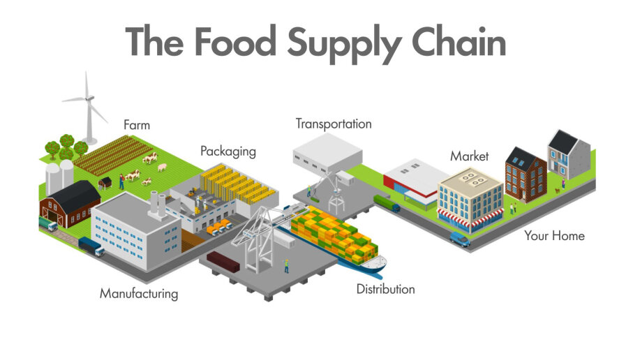 food supply chain