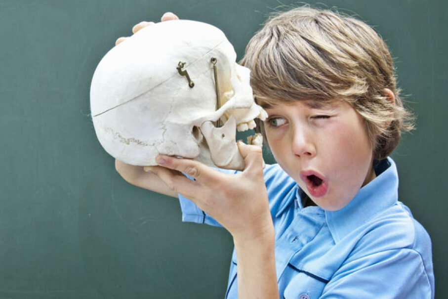 A skull might be a pretty cool present, but our gifts provide more interactive fun while teaching a thing or two about science. Mieke Dalle/Photographer's Choice/Getty Images
