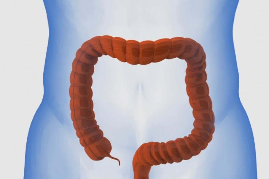 Your large intestine is equal in length to the height of a short person.  ©iStock/Thinkstock