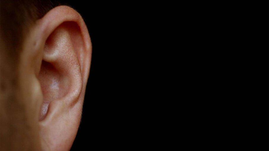 hearing, loss