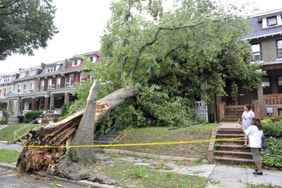 Make sure that trees near your house are cut back to avoid disasters like this one. MLADEN ANTONOV/AFP/Getty Images