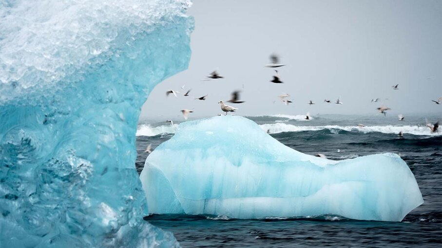 iceberg, drought