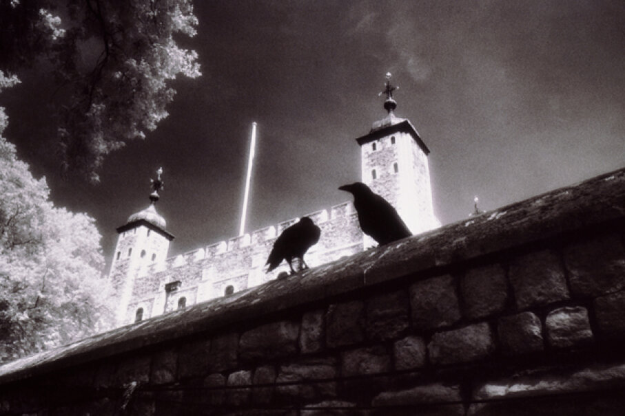 Ravens, especially those at the Tower of London, have captivated the popular imagination. Paul Windsor/Getty Images