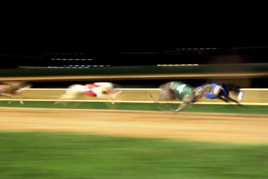 Lou Eisenberg won the New York Lottery back in the '80s and spent it all. Today he likes to make penny bets at the dog track. iStockphoto/Thinkstock