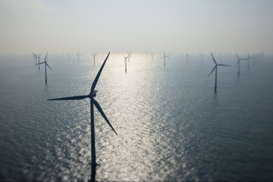 Some crafty pinnipeds may view wind farms like this one, sunk off the coast of Denmark, as stashes of food. © Cameron Davidson/Corbis