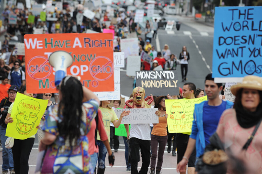 People carry signs during a protest against biotech giant Monsanto in 2013 to call attention to the dangers posed by GMO food. But are GMOs really dangerous? ROBYN BECK/AFP/Getty Images