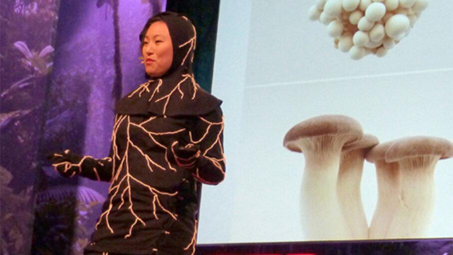 mushroom death suit