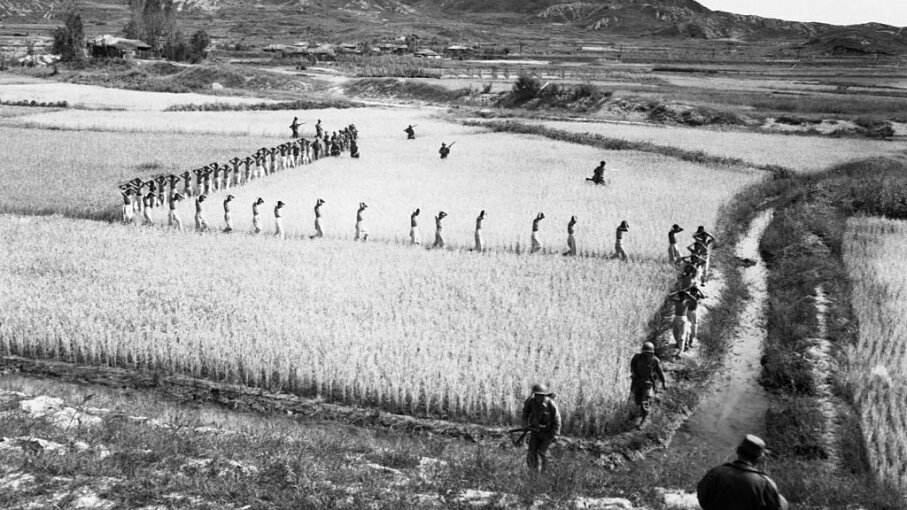 North Korean prisoners, taken by U.S. Marines in a foothills battle, march single file across a rice paddy in 1950. CORBIS/Corbis via Getty Images