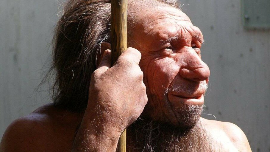 This recreation of what a living Neanderthal man would've looked like is found in the Neanderthal Museum in Mettmann, Germany. Erich Ferdinand/Flickr