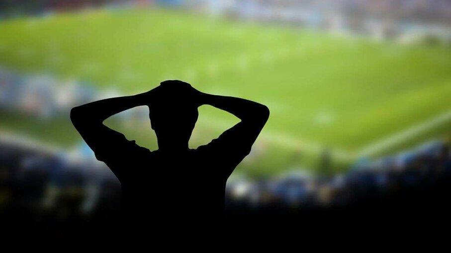 Sports fan watching game