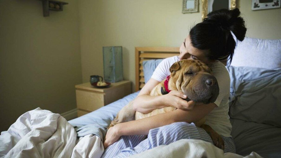 Cuddling up with pets doesn't expose your furry friends to a risk of disease transmission. HeroImages/Getty Images